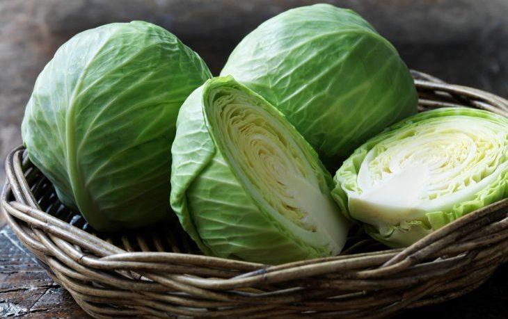 витамины в капусте белокочанной
