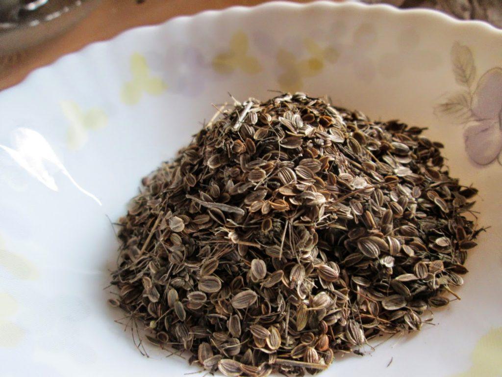 Польза и вред семян укропа, как принимать