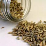 Польза и вред семян укропа для здоровья человека