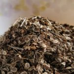 Чем полезны семена укропа от запора, вздутия, метеоризма, для сосудов