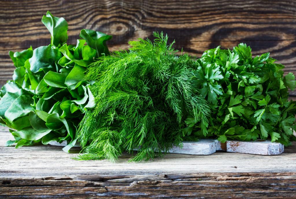 Рецепты с сельдереем и петрушкой, укропом