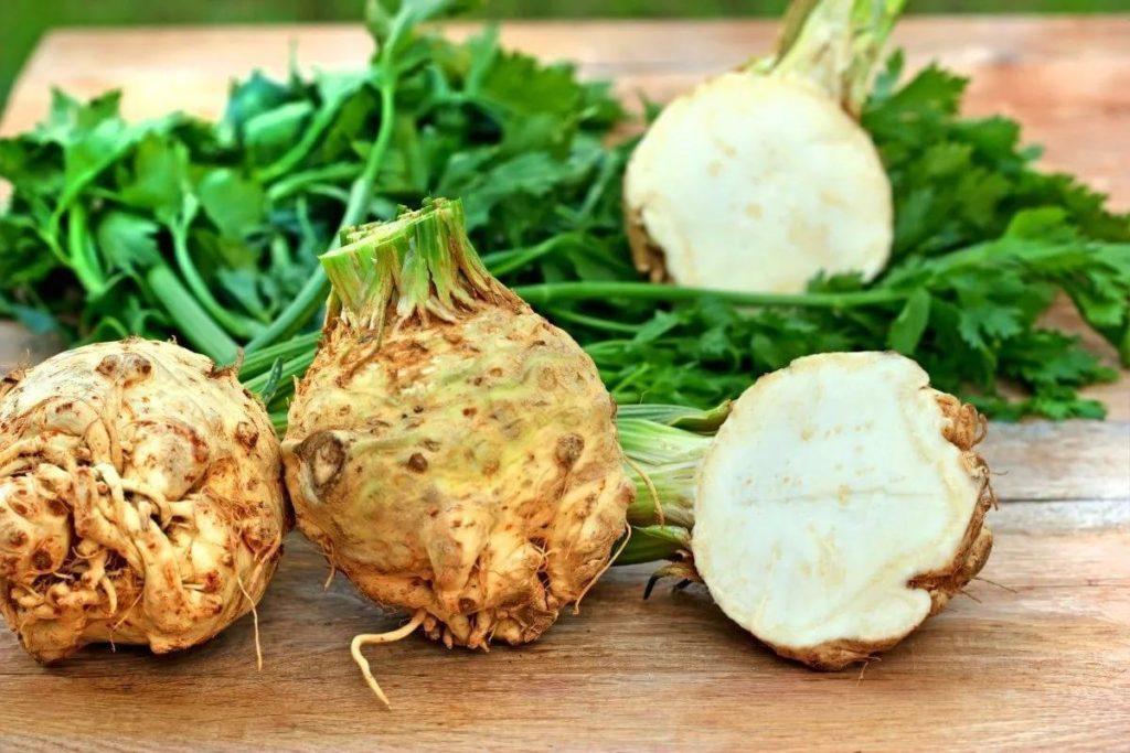 Польза и вред сельдерея корневого, листового, черешкового